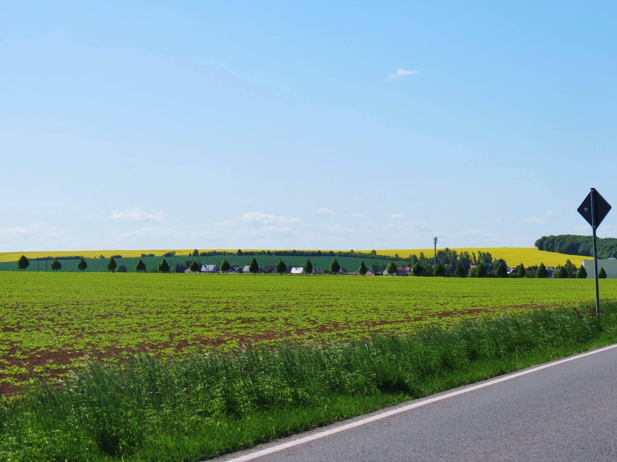 10 in Sachsen-Anhalt 1 gross
